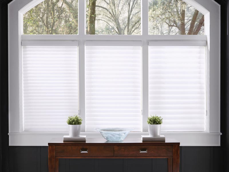 Tenera Sheer Shadings Accent On Windows